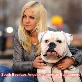 South Bay (Los Angeles) American Bulldog Community