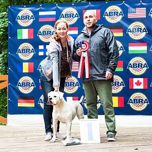 2016 ABRA Russia Championship - Show 1 - Judge Troy Churchill